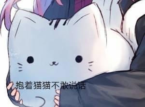 抱着猫猫喽不敢说话-i表情表情包