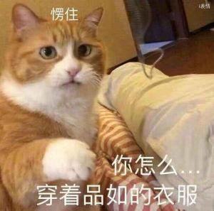 猫咪呆住,你怎么穿着品如的衣服