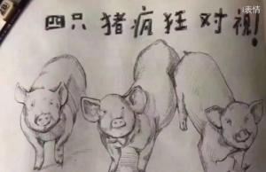 四只猪疯狂对视其中有一个你