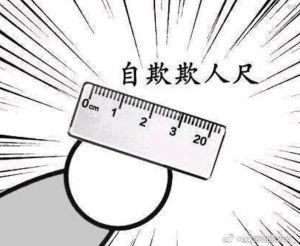 自欺欺人尺20厘米