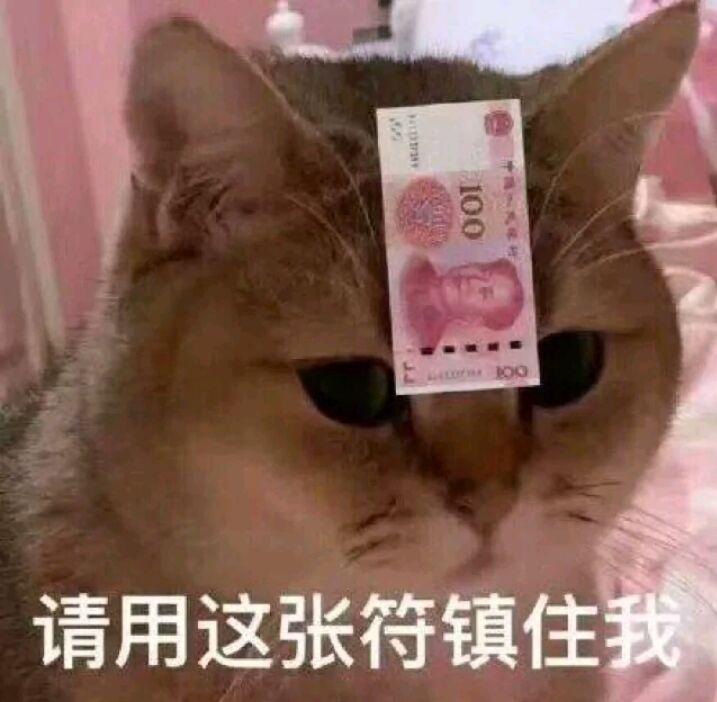 猫咪请用这张符镇住我,钱