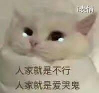 猫咪哭,人家就是不行,人家就是爱哭鬼