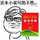 新华字典:这本小说写的不错