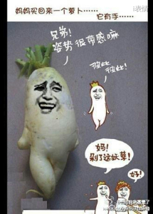 妈妈买回来一个萝卜。。它有手。兄弟姿势很带感嘛,彼此彼此,妈剁了这妖孽,好。