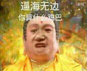 佛祖:逼海无边你算什么鸡巴