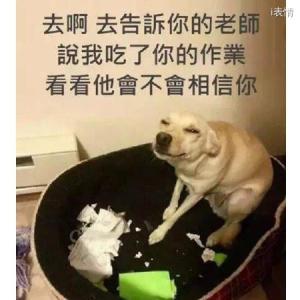 很贱的狗:去吧去告诉你的老师,说我吃了你的作业,看看他会不会相信你