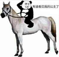 骑着白马:有谁看见我的公主了