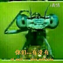 螳螂挠头:那个。。你们有没有。。。就是那种。。