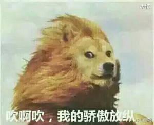 柴狗版狮子:吹啊吹,我的骄傲放纵