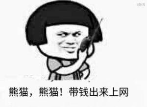 蘑菇头熊猫熊猫!带钱出来上网,我是熊猫我是熊猫收到请讲,over