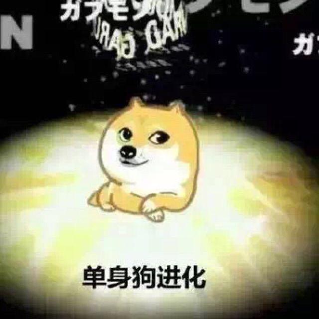 神烦狗数码宝贝版:单身狗进化-i表情表情包