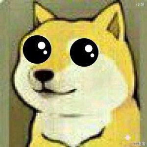 在眼汪汪的神烦狗