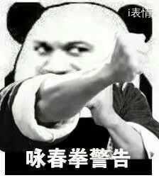 叶问:咏春拳警告,泰拳警告