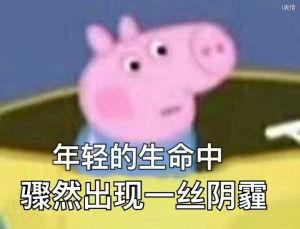 小猪佩奇:年轻的生命中骤然出现一丝阴霾